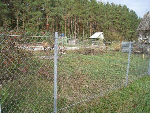 Фото ограды из сетки на участке