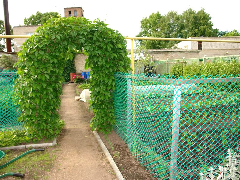 Заборчик для огорода своими руками