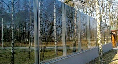 Ограждение из прозрачного стекла