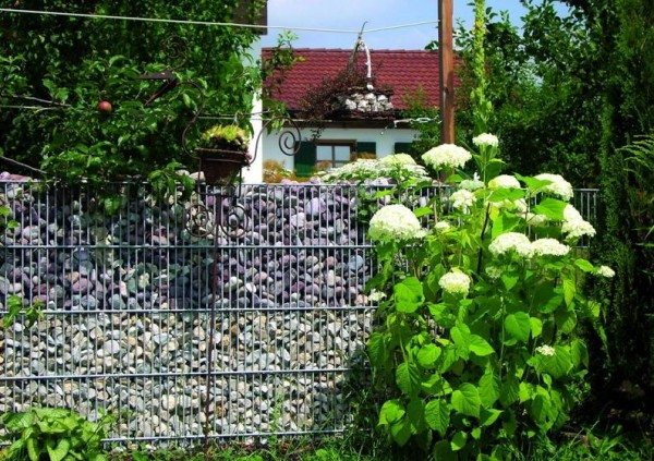 Пергоны на садовом участке