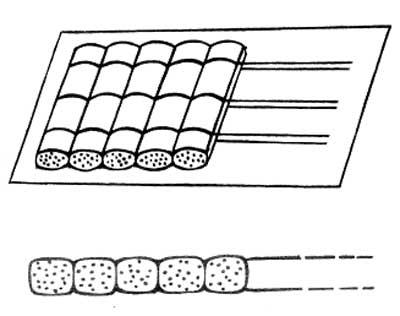 Принцип плетения тростниковых матов