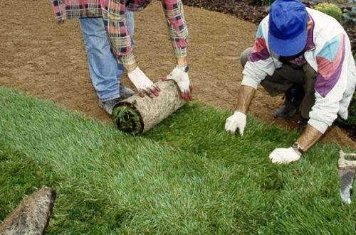 С ограждающим заборчиком можно не беспокоиться по поводу сохранности внешнего вида газонной травы