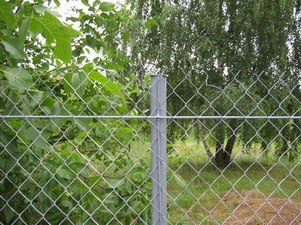 Сетка рабица для забора – отличный вариант для садового участка.