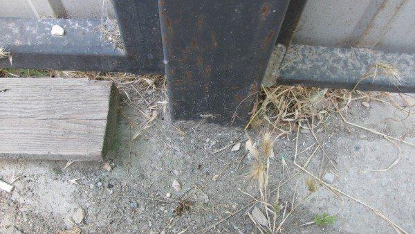 Столб, на который опираются правая створка ворот и калитка, забетонирован в грунте.