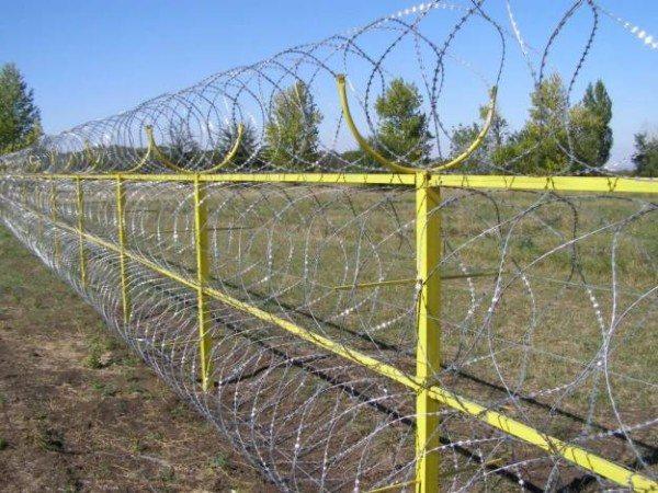Забор «Егоза»