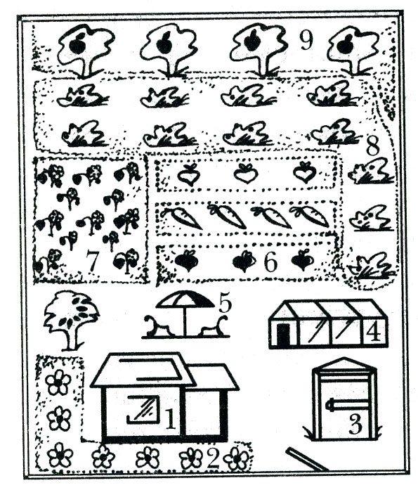 План дачного участка, который
