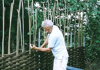 Процесс изготовления плетня из лозы